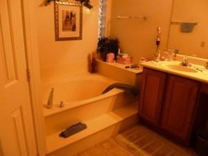 Before Master Bath Tub Area
